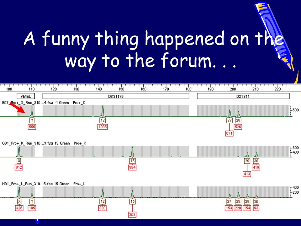 A funny thing happened on the way to the forum. . .