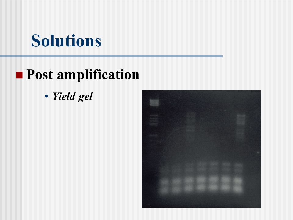 Solutions Post amplification Yield gel