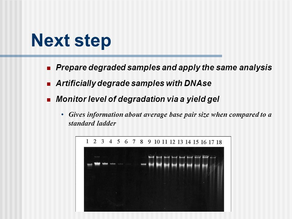 Next step Prepare degraded samples and apply the same analysis