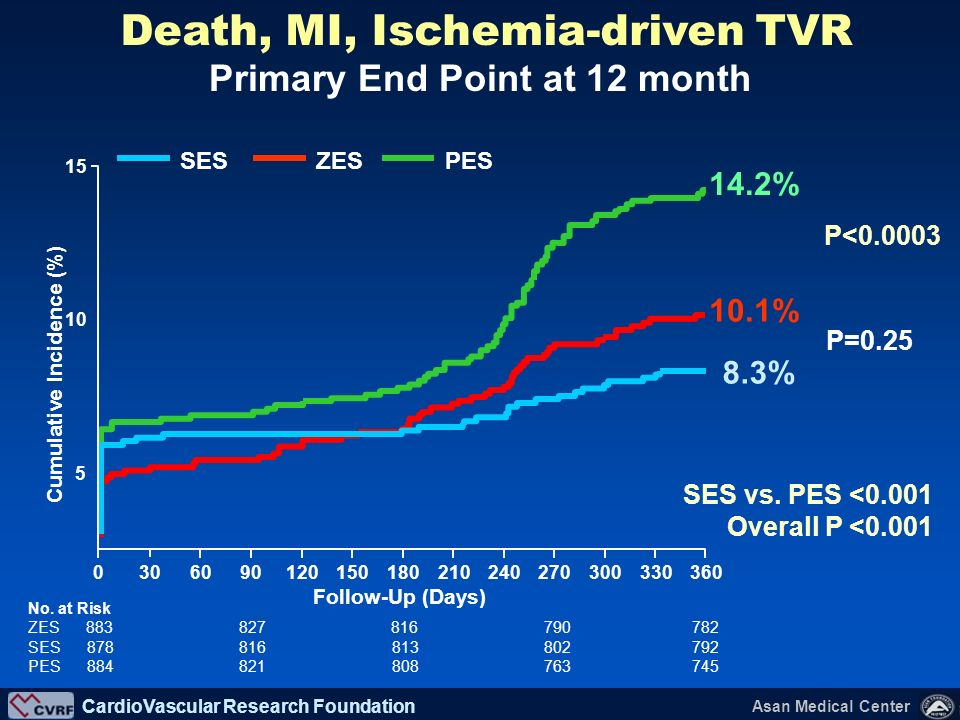 Death, MI, Ischemia-driven TVR Primary End Point at 12 month