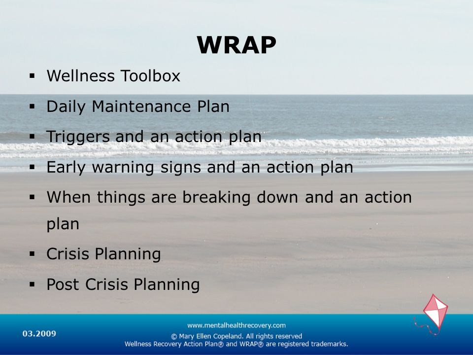 WRAP Wellness Toolbox Daily Maintenance Plan