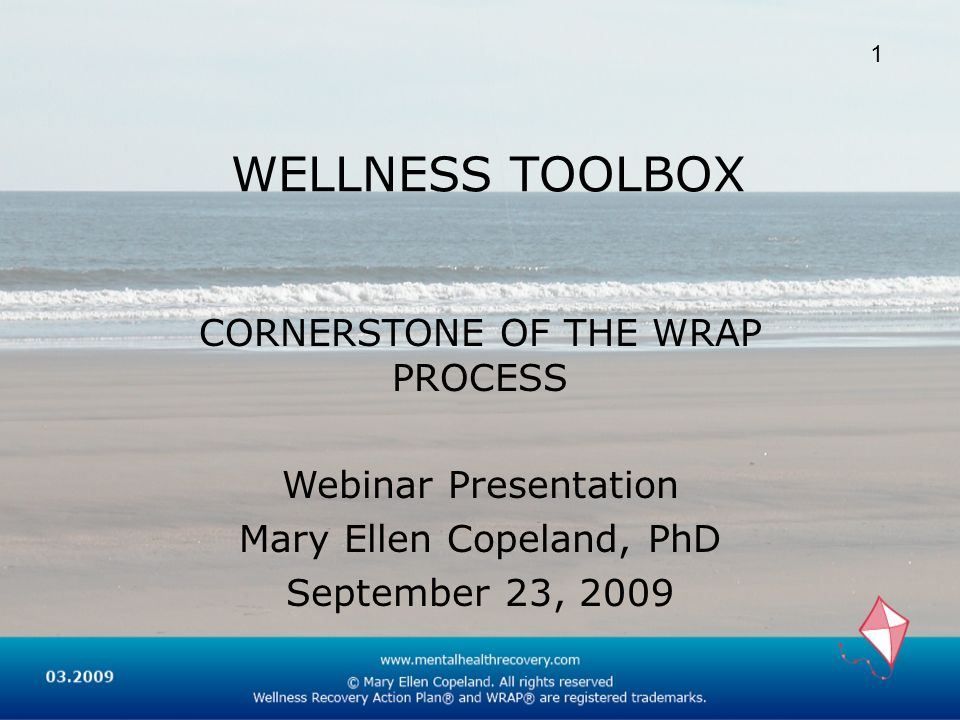 WELLNESS TOOLBOX CORNERSTONE OF THE WRAP PROCESS Webinar Presentation