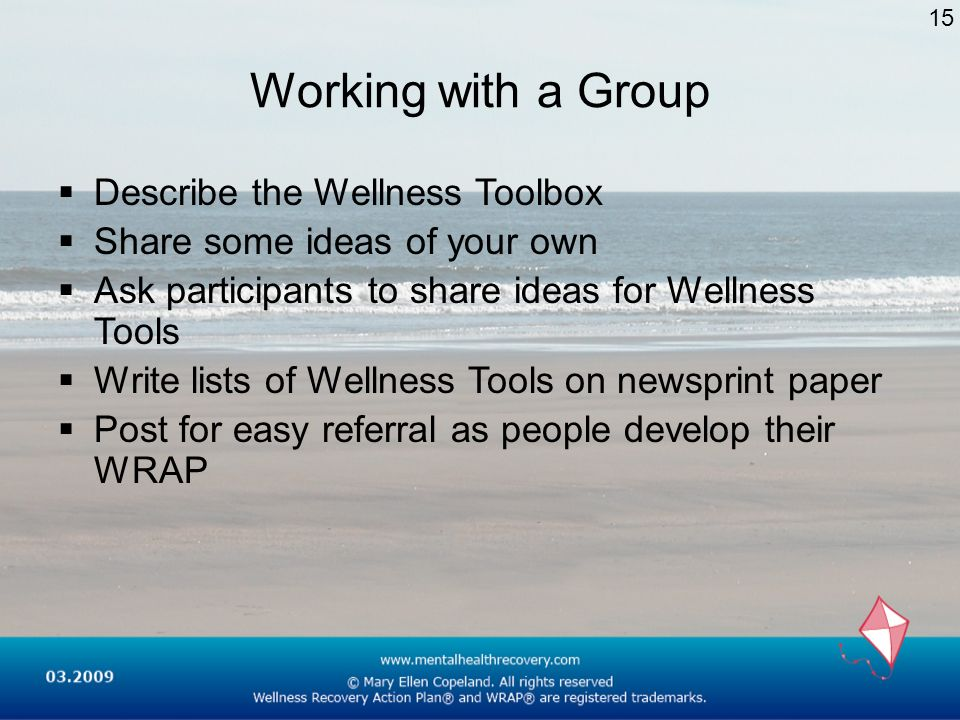 Working with a Group Describe the Wellness Toolbox