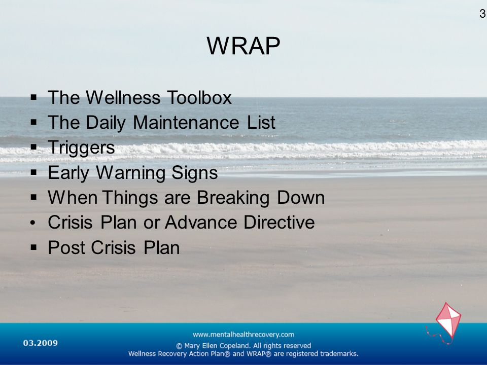 WRAP The Wellness Toolbox The Daily Maintenance List Triggers
