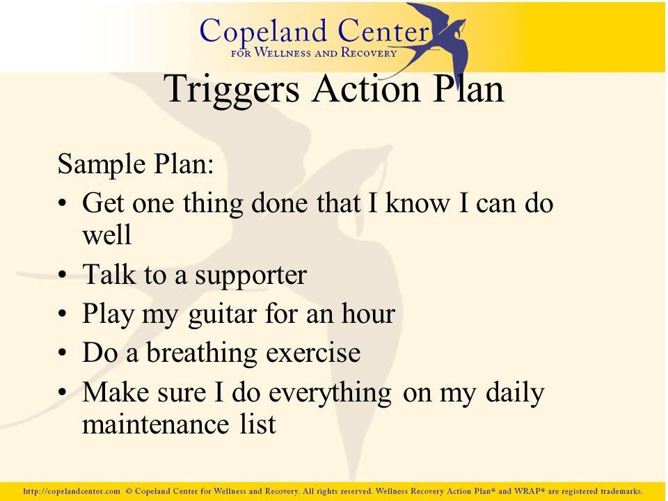 Triggers Action Plan Sample Plan: