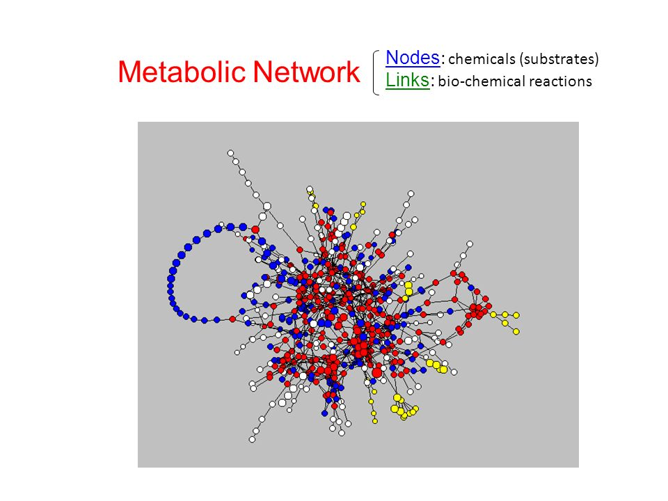 Metab-movie Metabolic Network Nodes: chemicals (substrates)