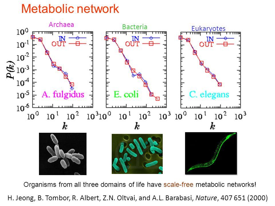 Meta-P(k) Metabolic network Archaea Bacteria Eukaryotes