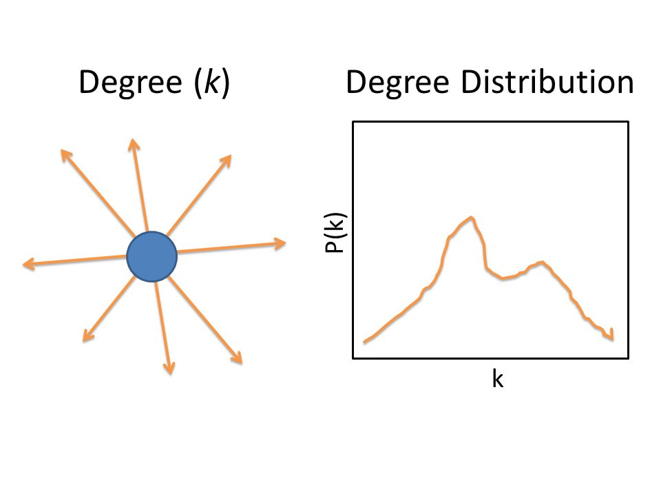 Degree (k) Degree Distribution P(k) k