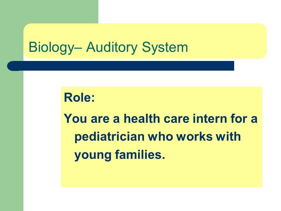 Biology– Auditory System