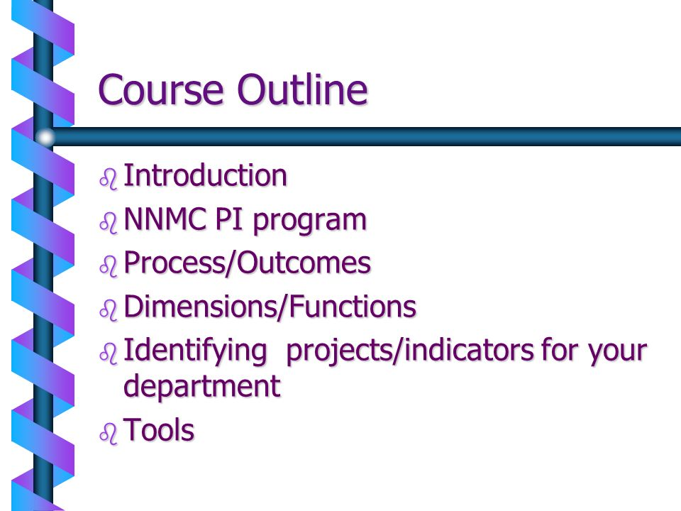 Course Outline Introduction NNMC PI program Process/Outcomes