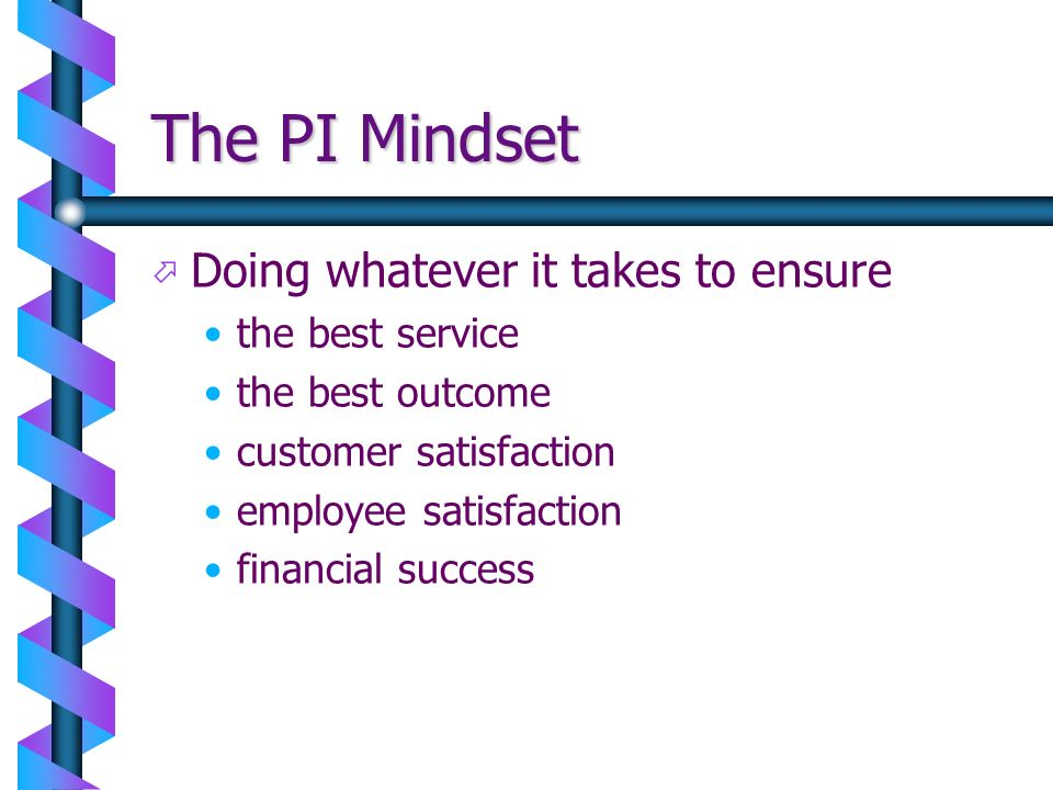The PI Mindset Doing whatever it takes to ensure the best service
