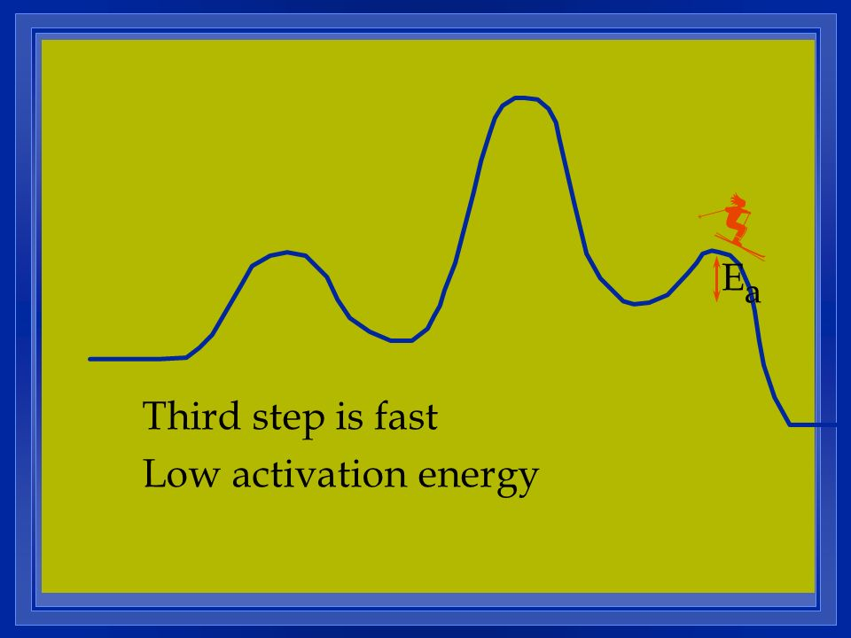 Ea Third step is fast Low activation energy