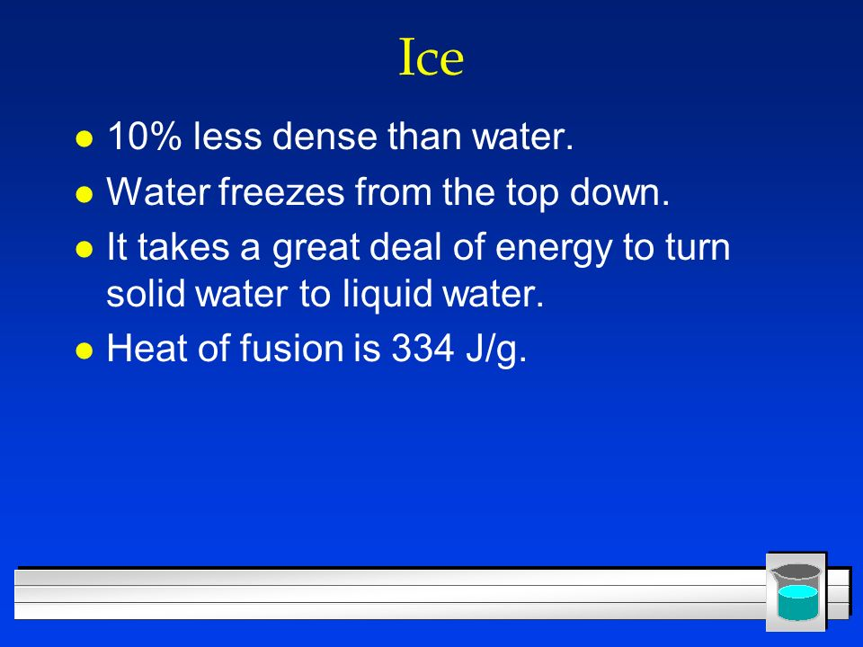 Ice 10% less dense than water. Water freezes from the top down.