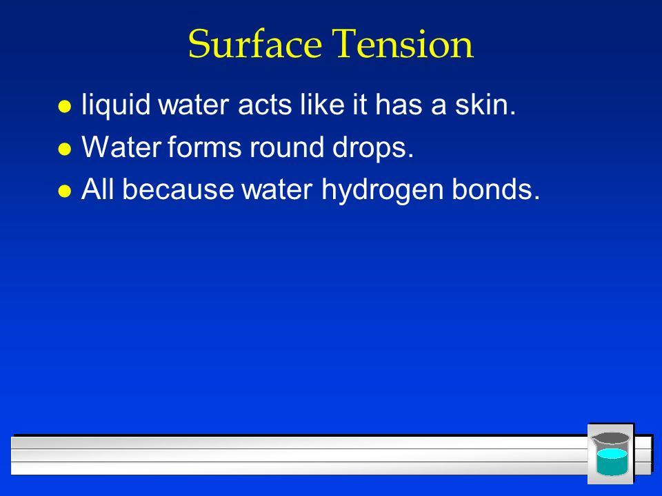 Surface Tension liquid water acts like it has a skin.