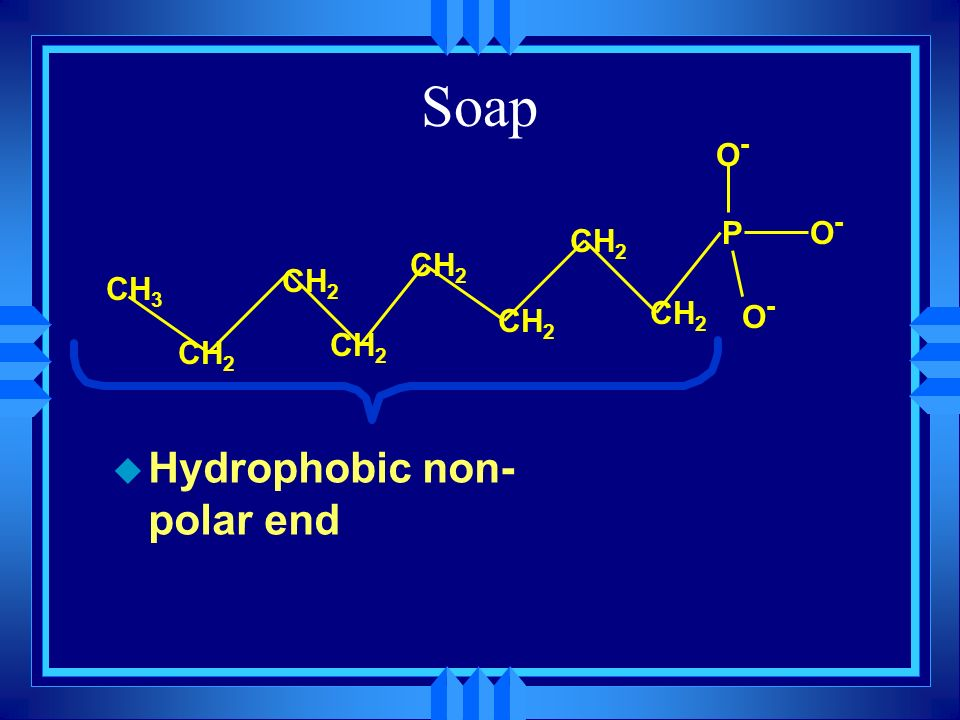 Soap P O- CH3 CH2 Hydrophobic non-polar end