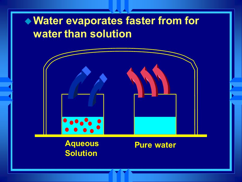 Water evaporates faster from for water than solution