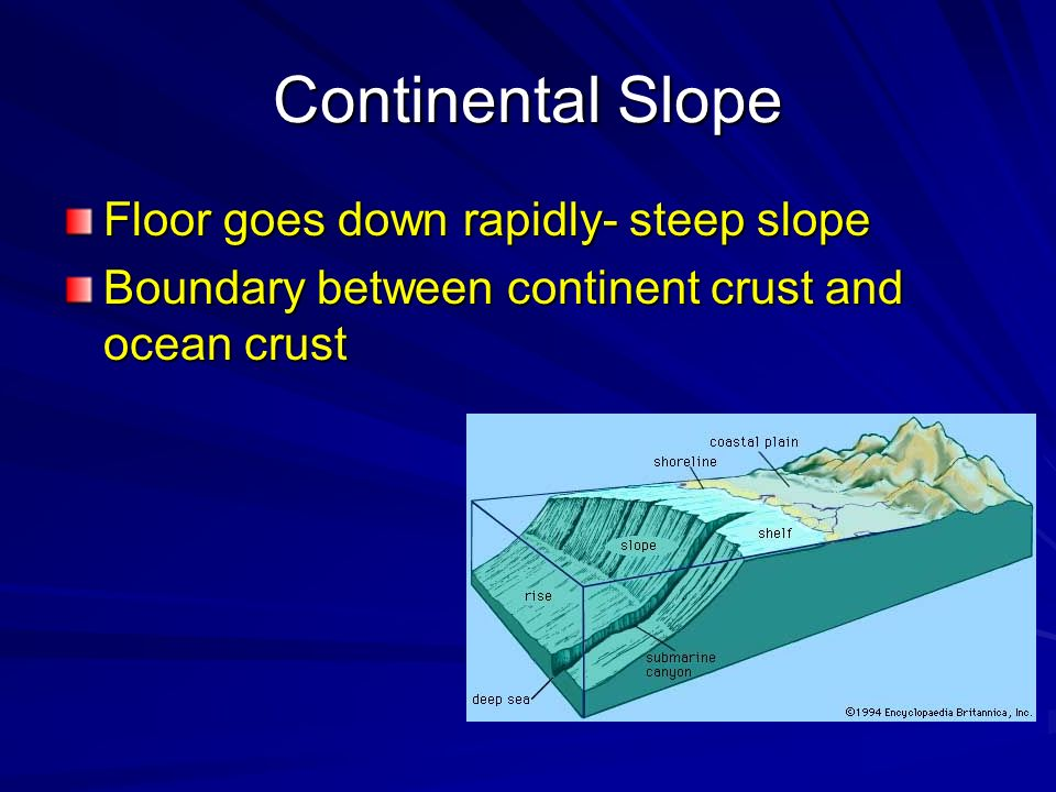 Continental Slope Floor goes down rapidly- steep slope
