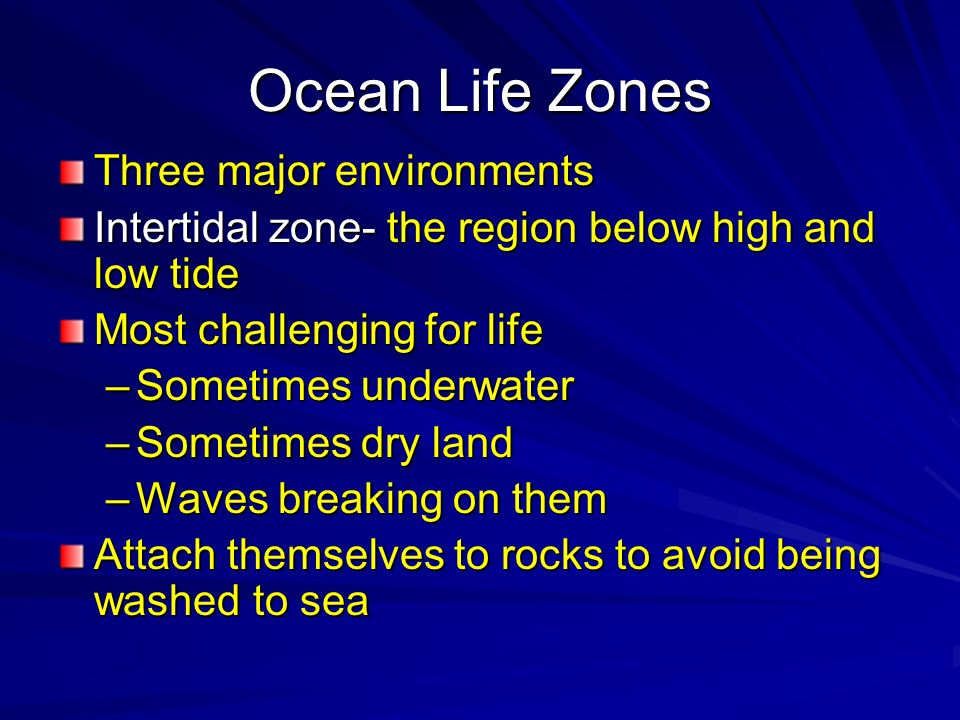 Ocean Life Zones Three major environments