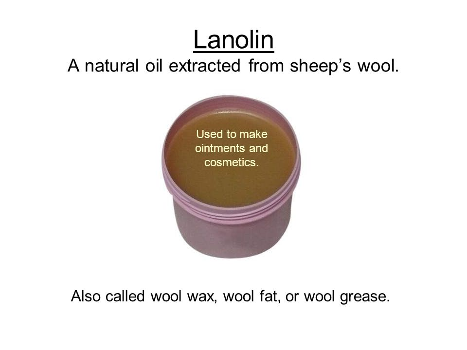 Lanolin A natural oil extracted from sheep's wool.