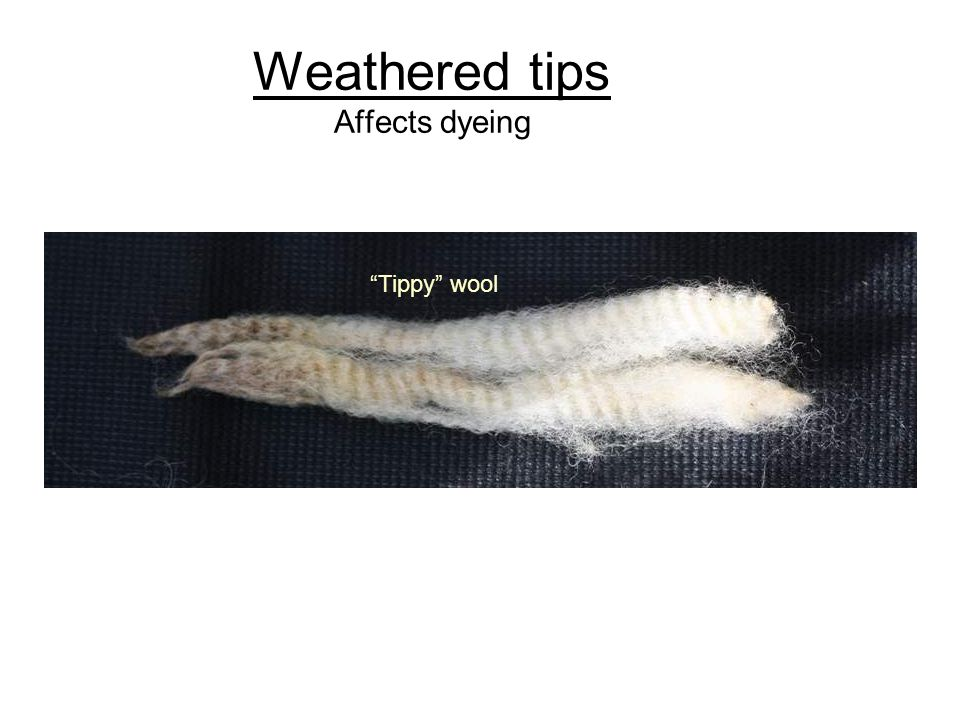 Weathered tips Affects dyeing