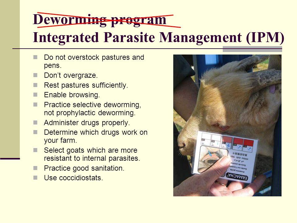 Deworming program Integrated Parasite Management (IPM)