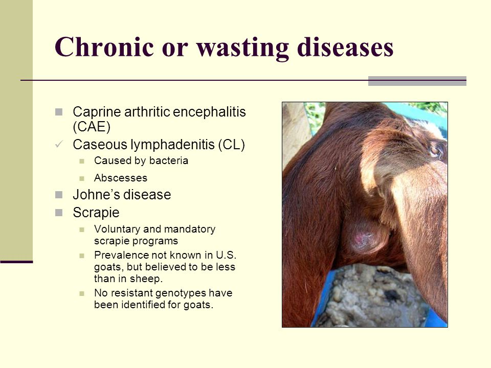 Chronic or wasting diseases