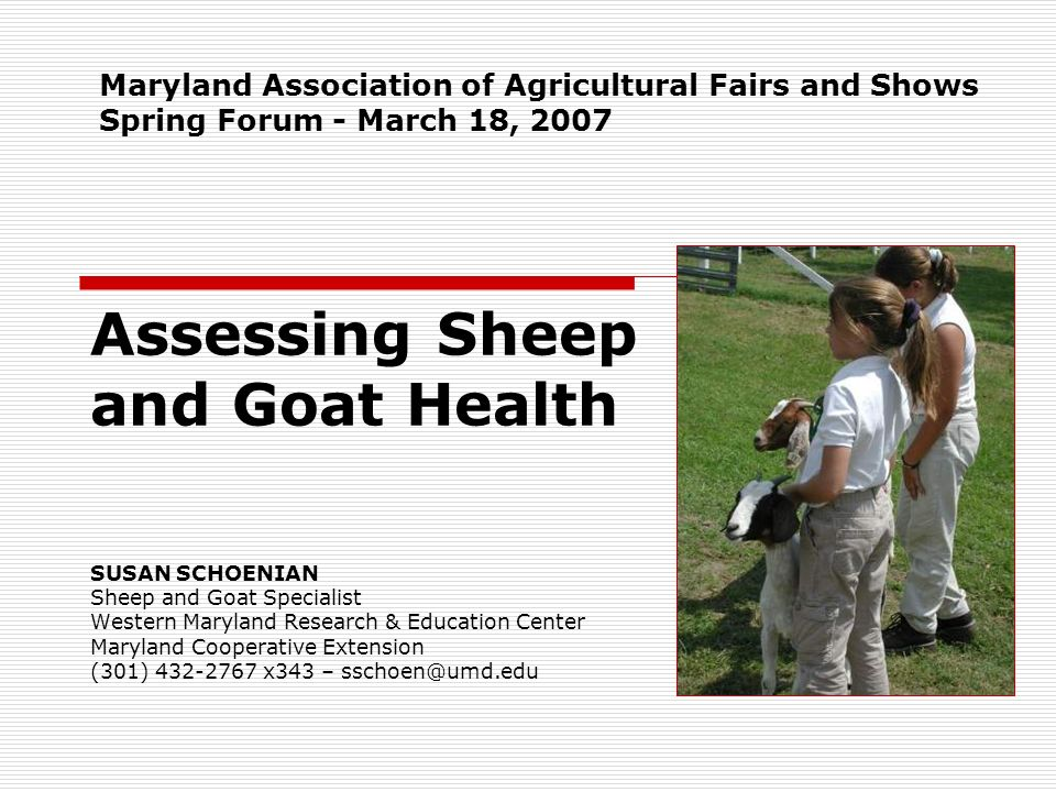 Assessing Sheep and Goat Health
