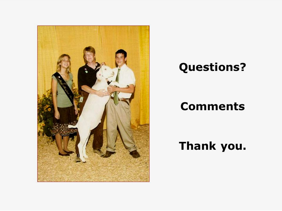 Questions Comments Thank you.
