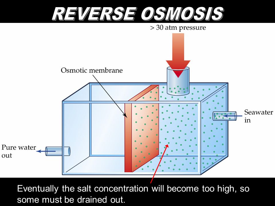 REVERSE OSMOSIS Eventually the salt concentration will become too high, so some must be drained out.