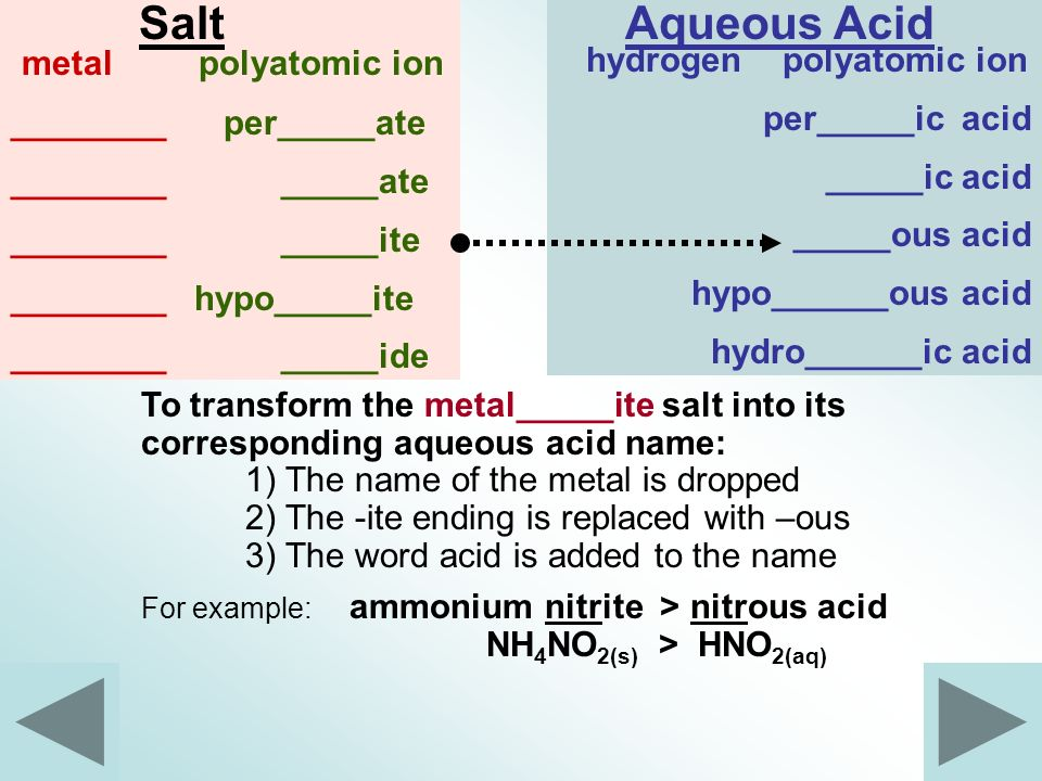 Salt Aqueous Acid metal polyatomic ion hydrogen polyatomic ion