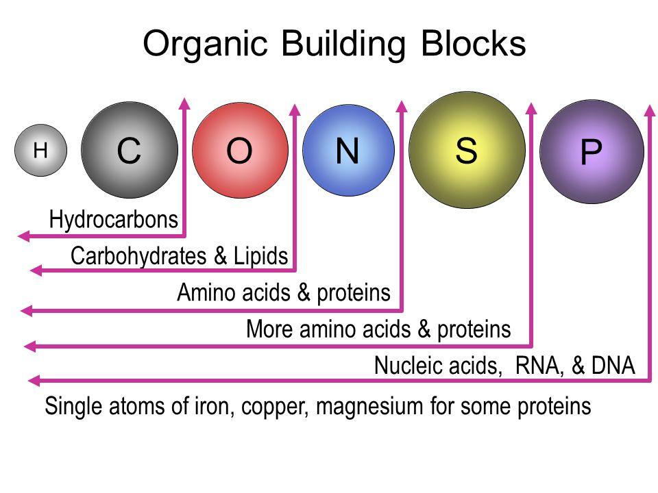 Organic Building Blocks