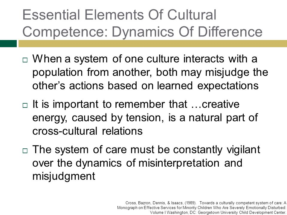 Essential Elements Of Cultural Competence: Dynamics Of Difference