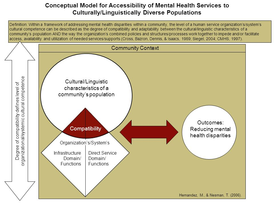 Conceptual Model for Accessibility of Mental Health Services to