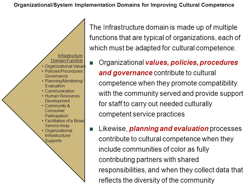 Organizational/System Implementation Domains for Improving Cultural Competence