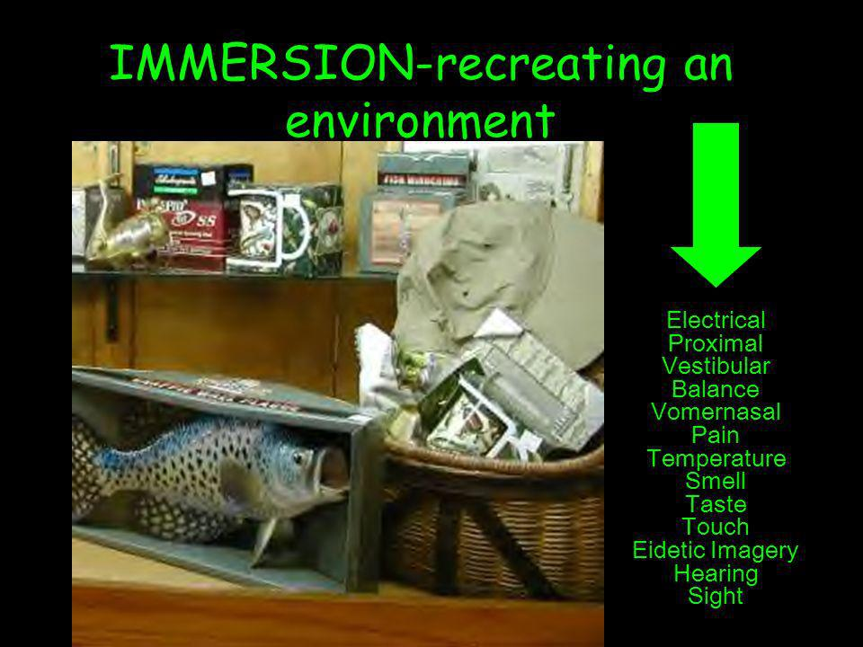 IMMERSION-recreating an environment