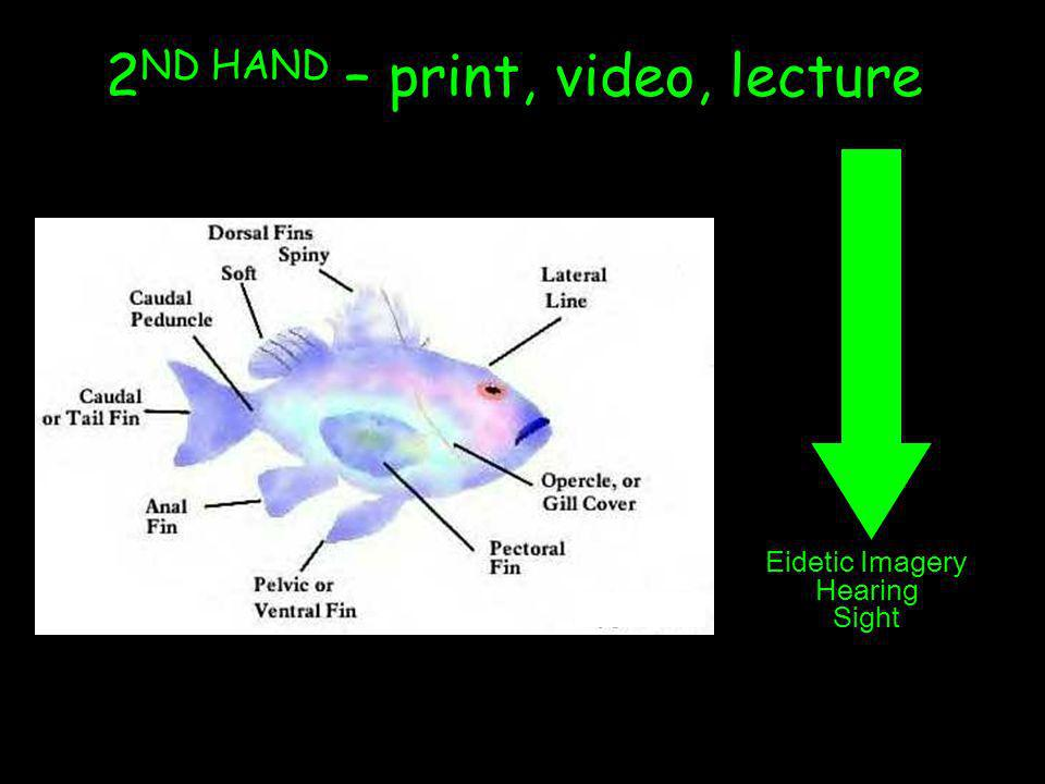 2ND HAND – print, video, lecture