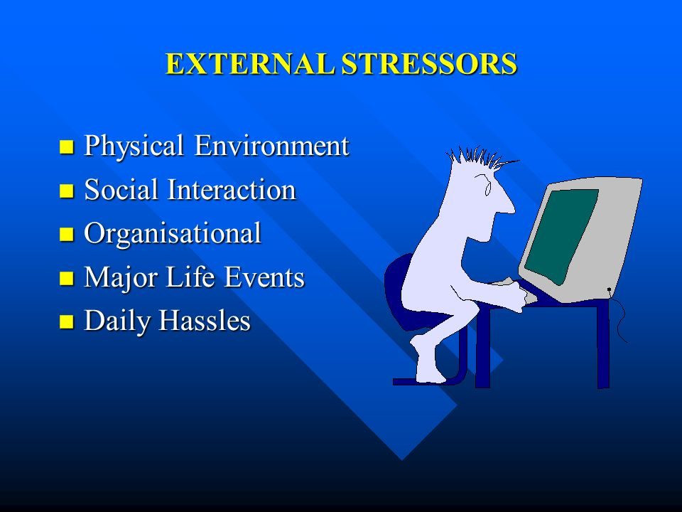 EXTERNAL STRESSORSPhysical Environment.Social Interaction.