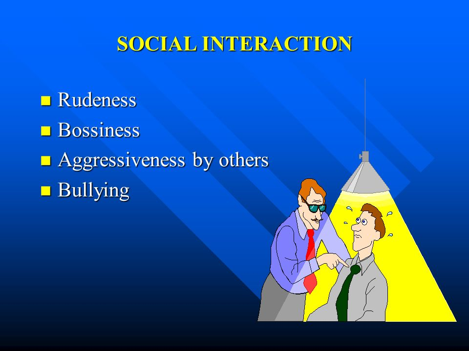 SOCIAL INTERACTION Rudeness Bossiness Aggressiveness by others Bullying
