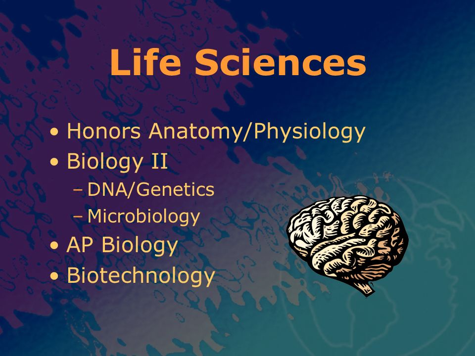 Life Sciences Honors Anatomy/Physiology Biology II AP Biology