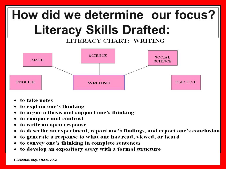 How did we determine our focus Literacy Skills Drafted: