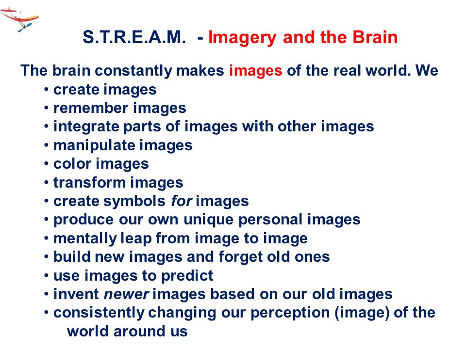 S.T.R.E.A.M. - Imagery and the Brain