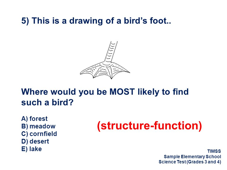 (structure-function)