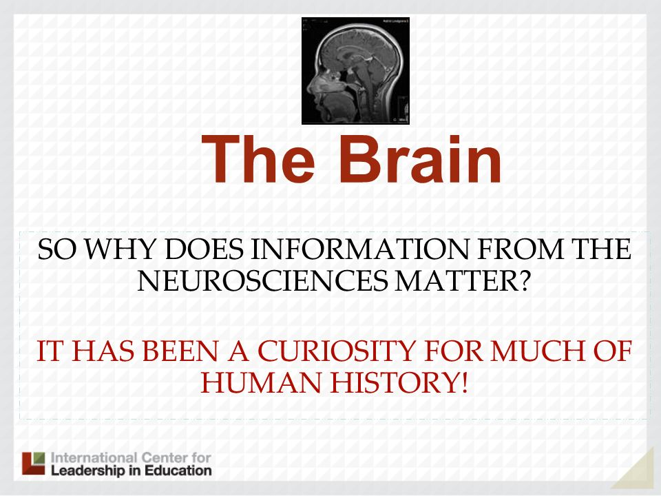 The Brain SO WHY DOES INFORMATION FROM THE NEUROSCIENCES MATTER