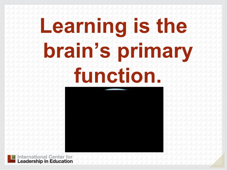 Learning is the brain's primary function.