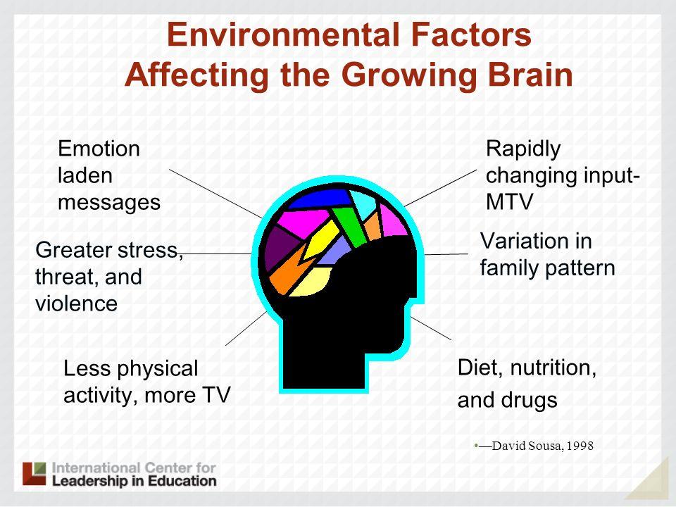 Environmental Factors Affecting the Growing Brain