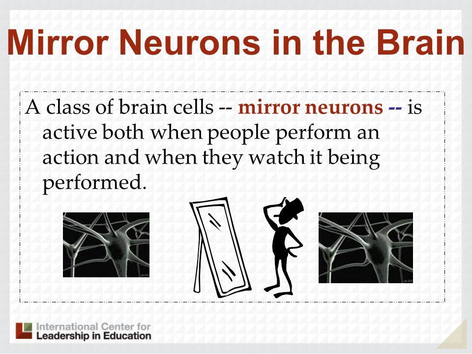 Mirror Neurons in the Brain