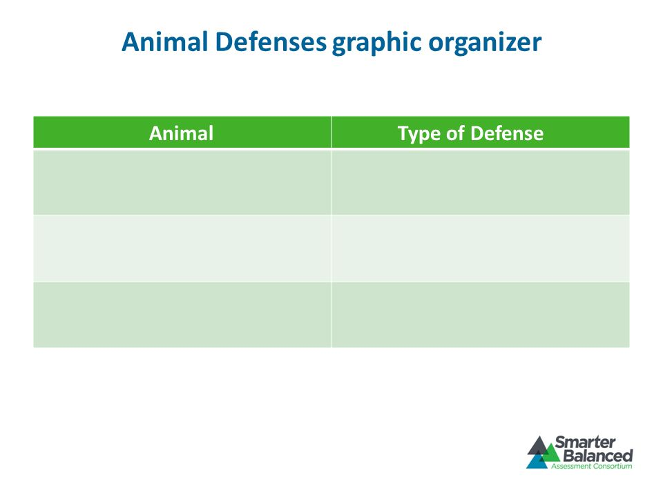 Animal Defenses graphic organizer