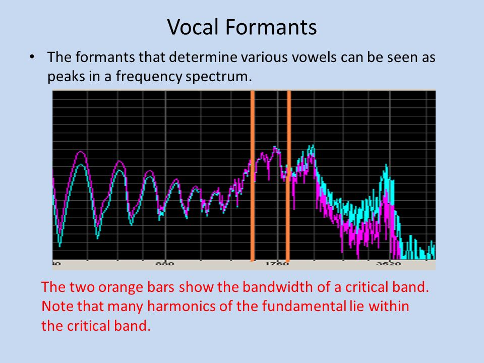 Vocal Formants The formants that determine various vowels can be seen as peaks in a frequency spectrum.