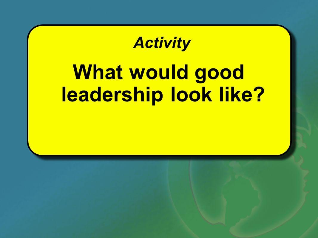 What would good leadership look like