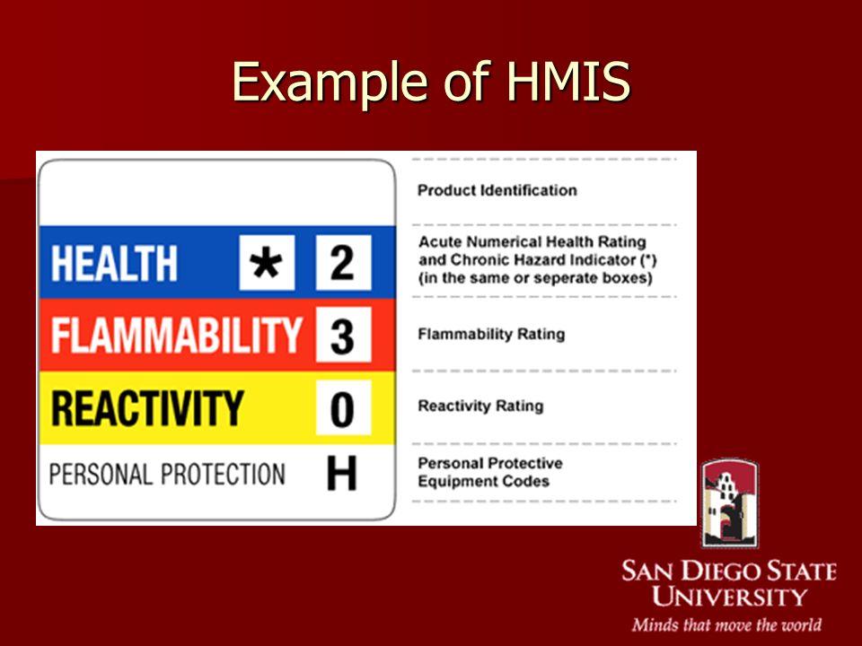 Example of HMIS